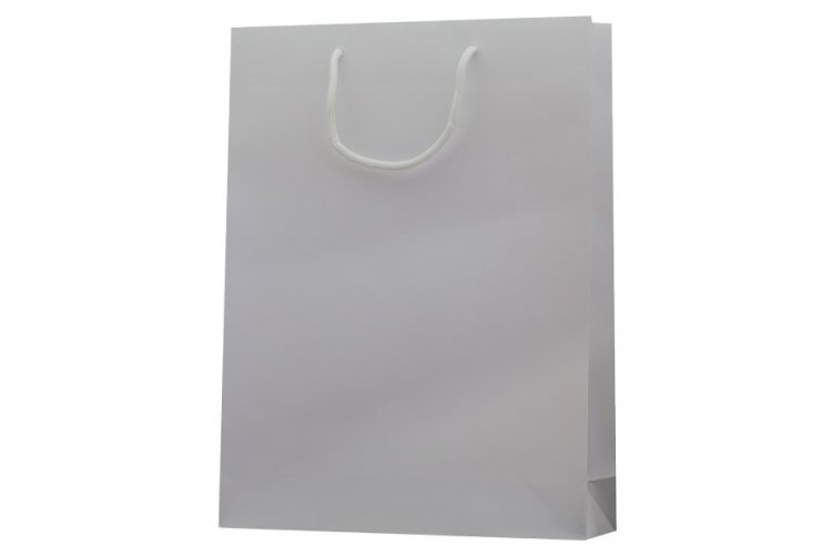 Large White Boutique Paper Bags Pack 25. Dimensions 315mm(W) x 100mm(G) x 420mm(H).