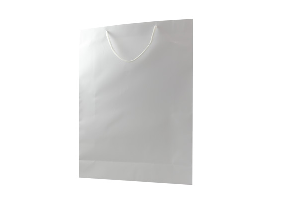 Large White Matte Gift Paper Bags pack of 24. Dimensions - 31.5cm(W) x 42cm(H) x 10cm(G).